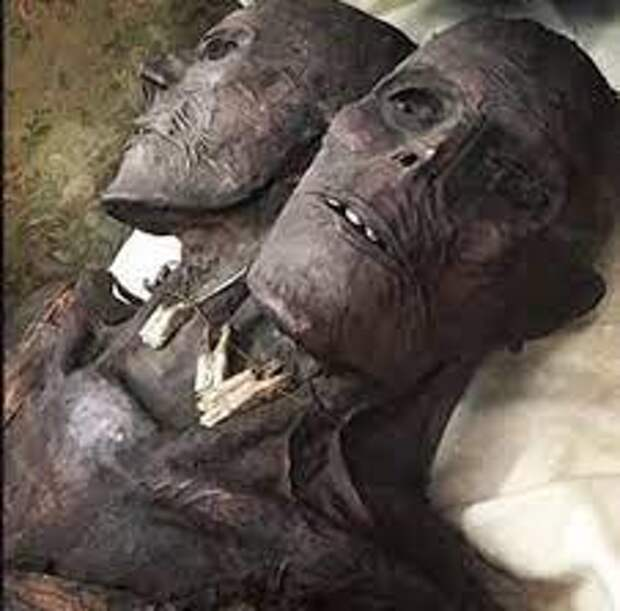 «Кап-Два» — загадочная мумия двухголового гиганта