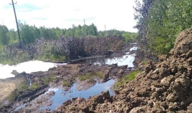 Два гектара леса залиты нефтепродуктами вСвердловской области