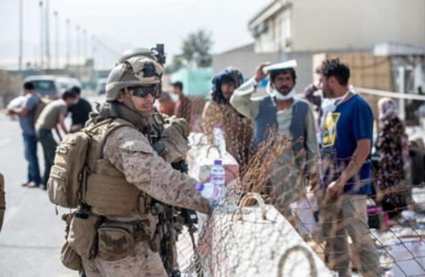 Названа главная сфера для сотрудничества США и «Талибана»