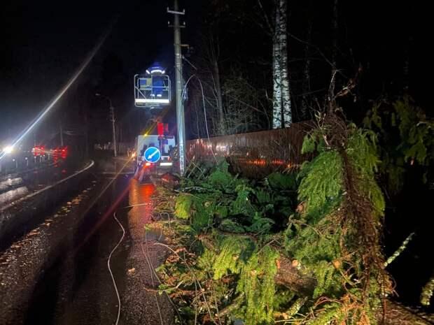 «Ленсвет» отвоевывает уличное освещение у бури. Сестрорецк, Парголово и Приморское шоссе пока во тьме