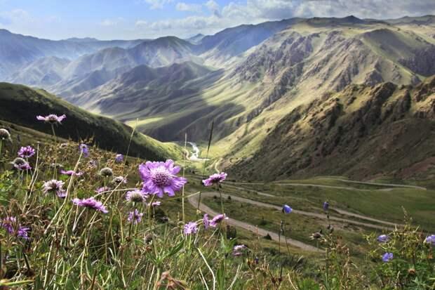 США нанесли «чувствительный урон» отношениям с Киргизией. А что же Россия?