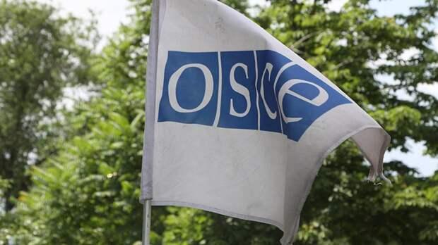 Пушков оценил попытку Украины лишить представителя Крыма голоса в ОБС