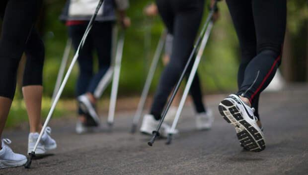 Занятие по скандинавской ходьбе для пожилых проведут в Подольске во вторник