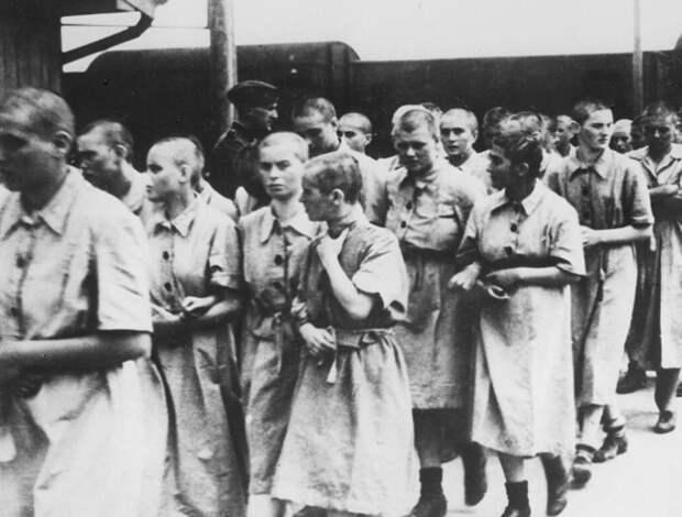 Женщин для публичных домов в концлагерях выбирали преимущественно из числа женщин помоложе и относительно здоровых.