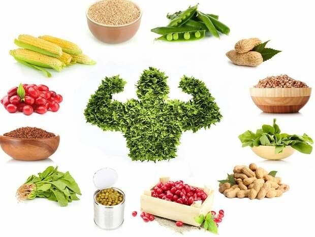 Чем питаются веганы? Шпаргалка для вегетарианцев: что можно есть, а что  нельзя различным течениям
