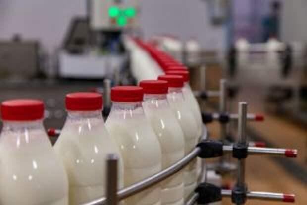 Сможем ли мы без белорусского молока?