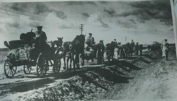 Тачанки Особой кавбригады 1-й Конной армии на марше, 1920 г.