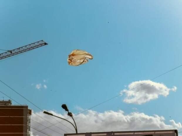 Жителей Читы предупредили об усилении ветра 17 мая