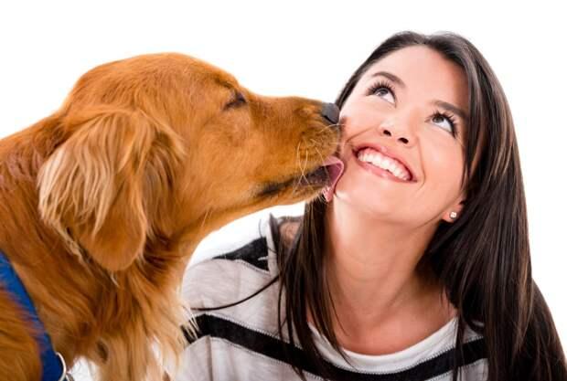Ученые: поцелуи с собаками укрепляют здоровье человека