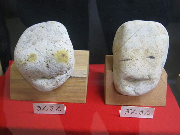 Японский музей Тинсекикан коллекционирует камни, похожие налица