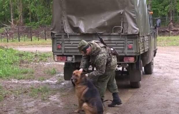 Копыркин: Россия усилила военное присутствие в армянском Сюнике