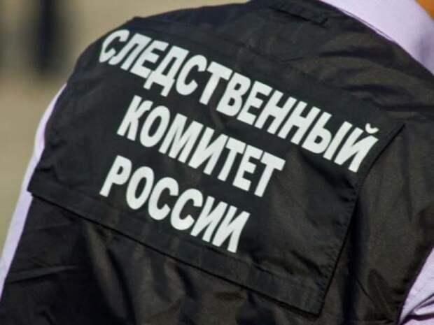 Уголовное дело против украинских полицейских заведено у Бастрыкина