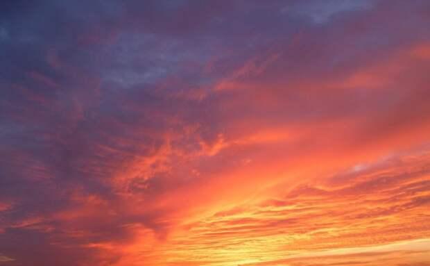Живопись от природы: заходящее солнце раскрасило небо в поселке художников золотым и лиловым