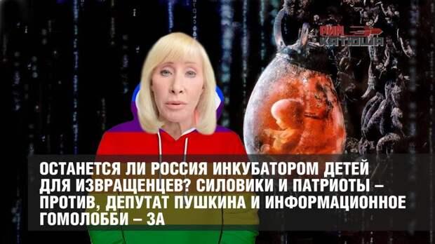 Останется ли Россия инкубатором детей для извращенцев? Силовики и патриоты – против, депутат Пушкина и информационное гомолобби – за