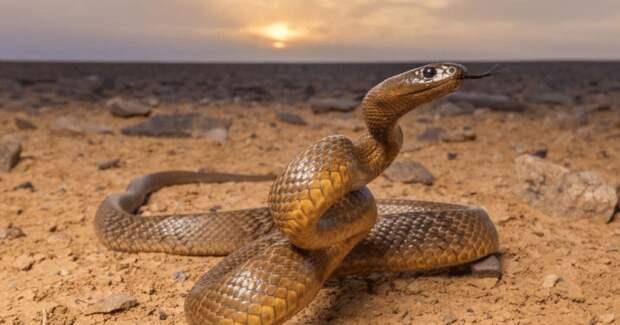 Почему самая ядовитая змея планеты ни разу никого неубила