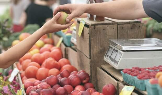 Четыре оптовых торговых объекта построят в Ростовской области