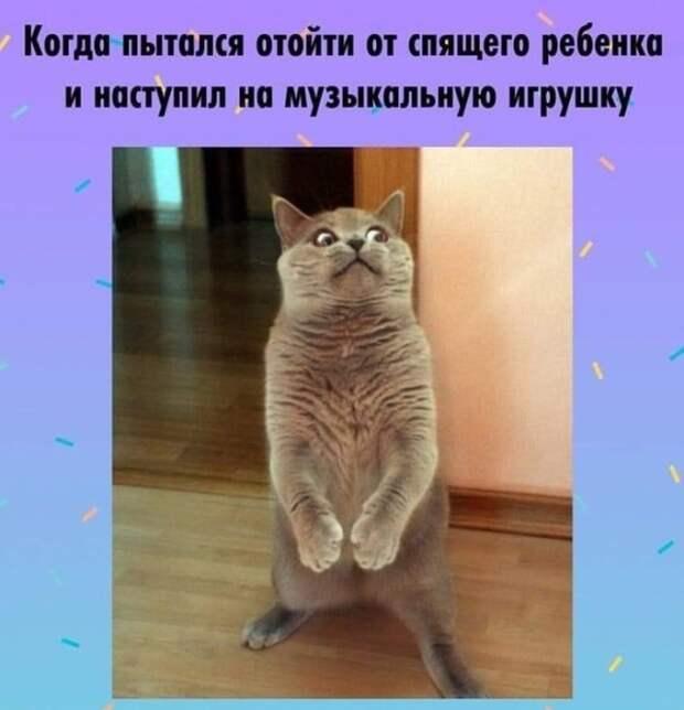 budni_roditeley_05