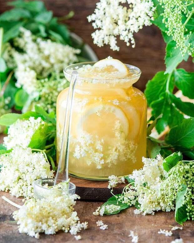 Для выпечки, лимонадов и коктейлей: готовим сироп из цветков бузины