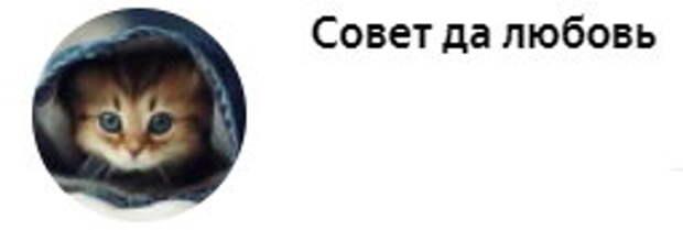 «ДОСТОЯНИЕ РЕСПУБЛИКИ». Два таланта на одной съемочной площадке. Как Андрей Миронов и Олег Табаков соперничали в жизни и в кино
