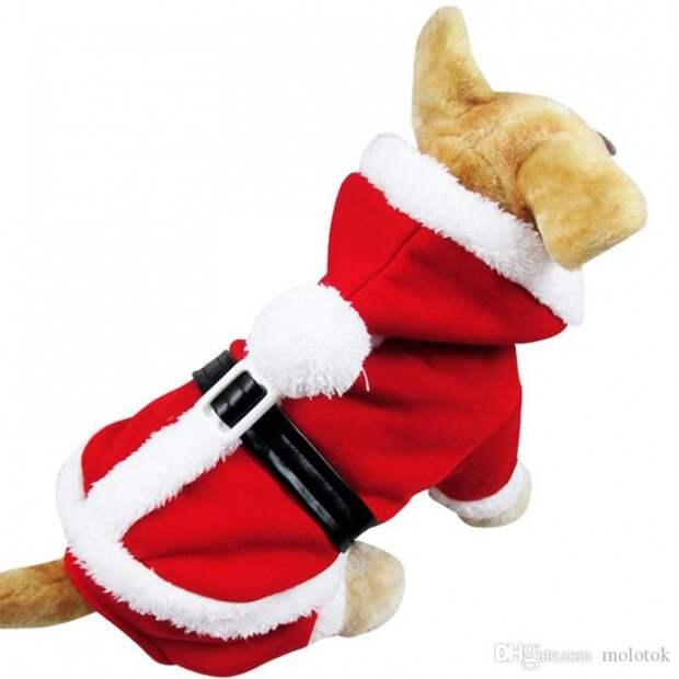 Новогодний костюм для собаки (выкройка)