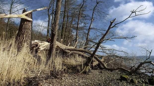 В Кабардино-Балкарии объявили штормовое предупреждение из-за ураганного ветра