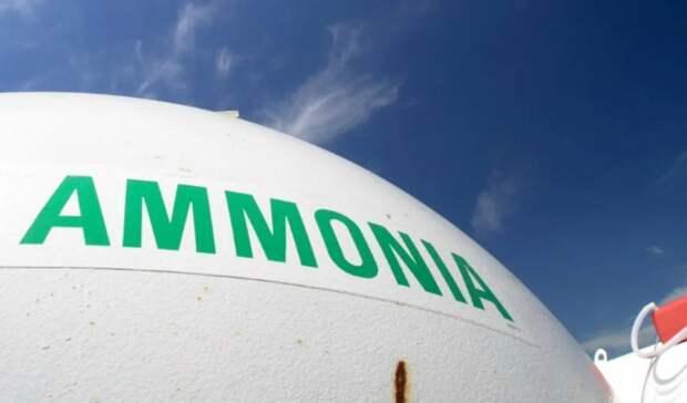 Завод повыпуску «зеленого» аммиака сооружается вМарокко