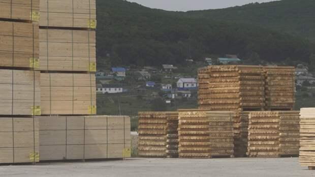 Дефицит древесины для строительства домов зафиксирован в России