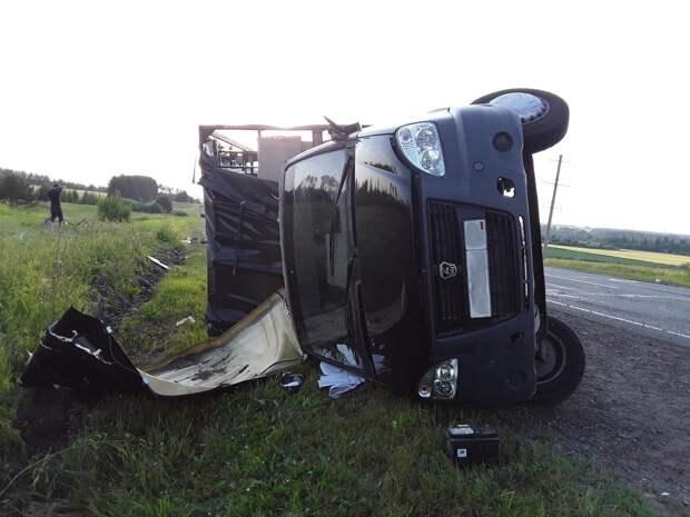 Водитель грузовика получил травмы при выезде на «встречку» на трассе в Удмуртии
