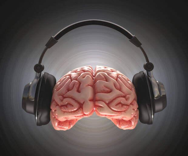 Как занятия музыкой влияют на память?