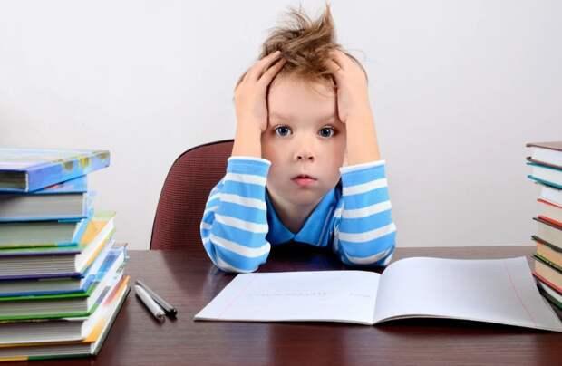 Потехина и Комитет по образованию опять провалили организацию дистанционного формата обучения