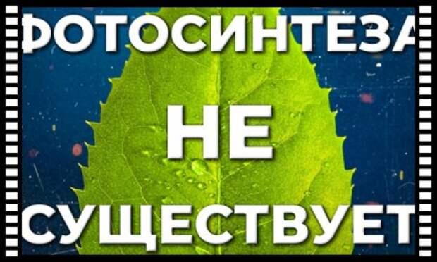 ЧТО НЕ ТАК С ФОТОСИНТЕЗОМ? ТОП-7 вопросов к теории газообмена растений