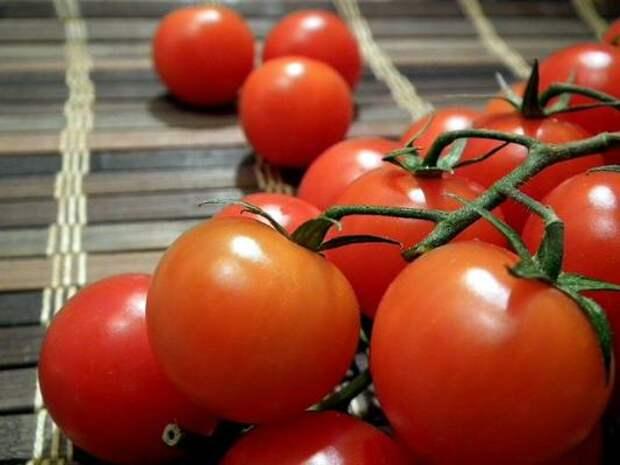 Чем подкормить помидоры во время цветения?