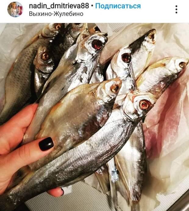 Фото дня: букет рыбок от мужа