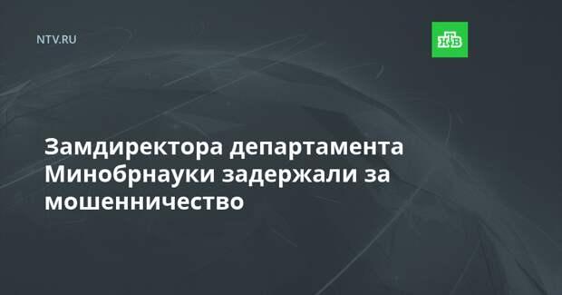 Замдиректора департамента Минобрнауки задержали за мошенничество