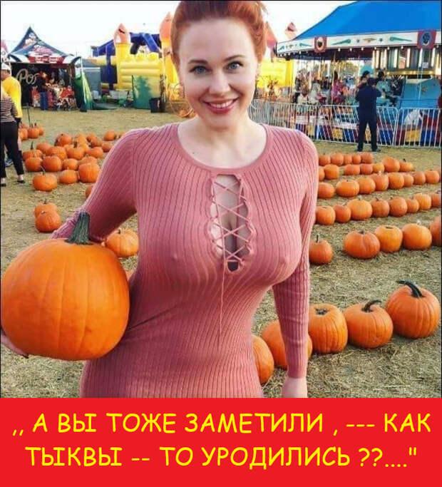 Никогда столько дорог в Крыму не строилось…