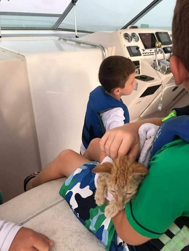 Люди отправились в море на рыбалку, но вместо этого поймали истощенного котика