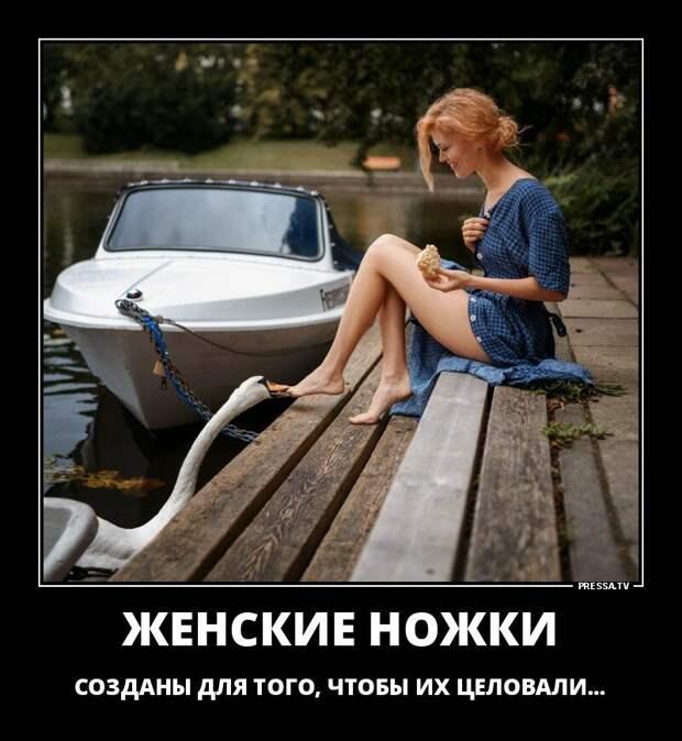 Жизненные демотиваторы про девушек | Shnyagi.Net | Яндекс Дзен