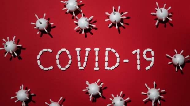 О метафизике коронавируса