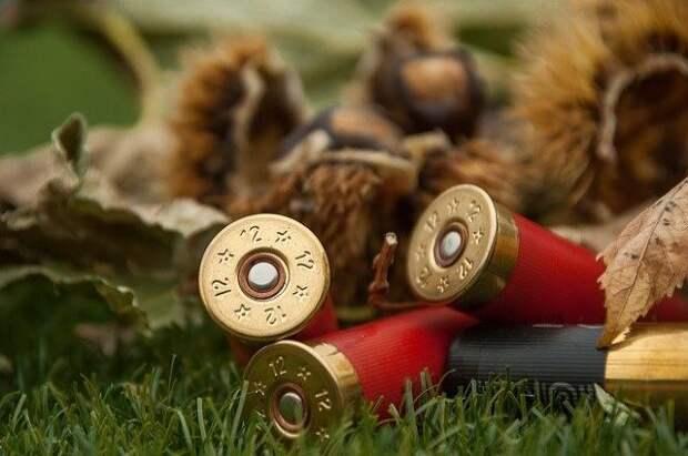 В РПЦ призвали запретить охоту ради развлечения