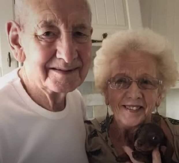 После смерти мужа у старушки нет большей радости, чем собачка. Трогательная дружба помогла хозяйке пережить горе