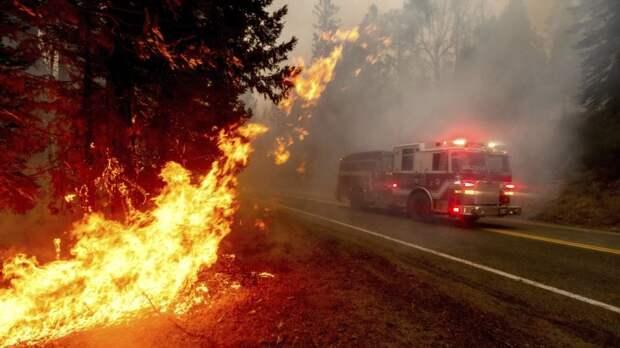 Трамп и Байден поспорили о причинах пожаров на Западе США