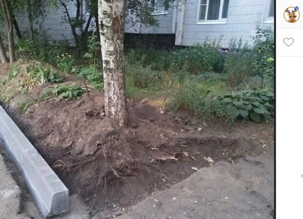 Установка бордюров не повредит корням деревьев на Люблинской – префектура ЮВАО