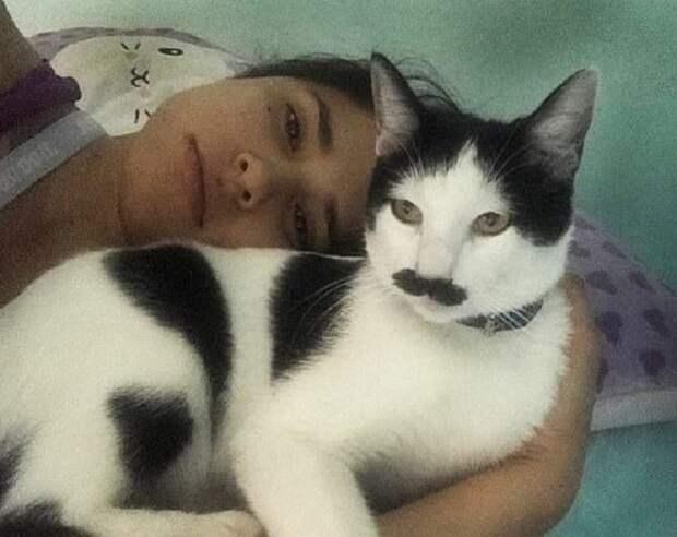 Девушка лежит с котом