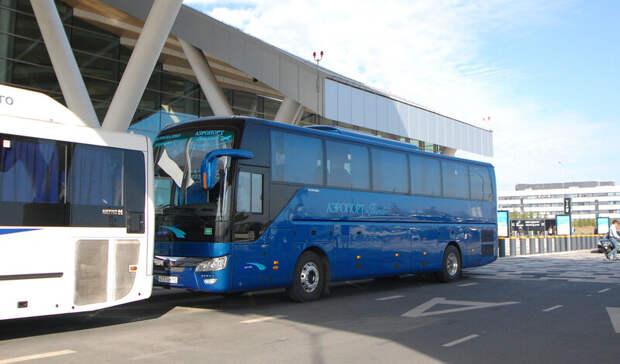 Автобусы предпочитают остальному общественному транспорту жители Ростова