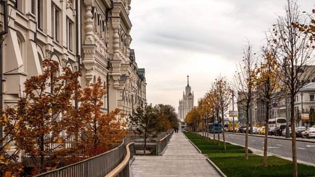 Гидрометцентр объявил желтый уровень опасности в Москве и области из-за сильного ветра
