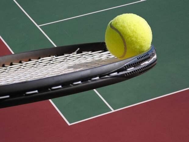 Отец теннисистки, избитой тренером Анны Курниковой, рассказал о коррупционной подоплеке
