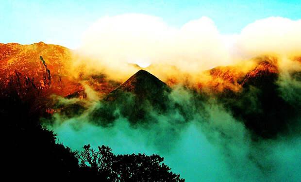 «Бермудский треугольник суши»: 200 километров леса, через который люди пока не смогли пройти