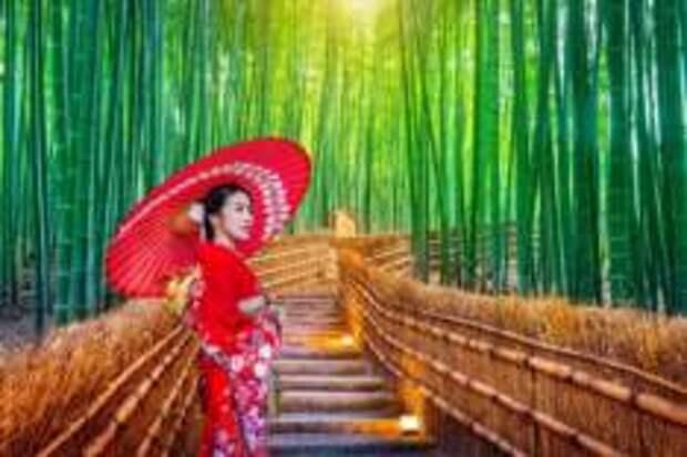 Нисикё-ку – по бамбуковым местам Киото