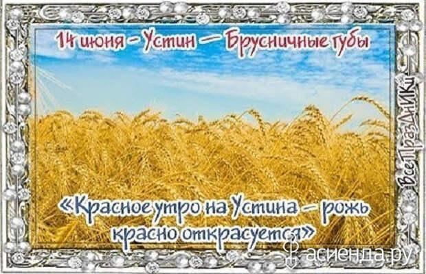 Народный календарь. Дневник погоды 14 июня 2021 года