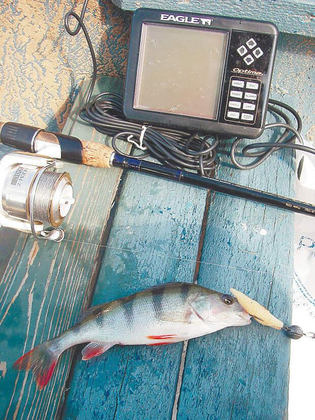 Где искать рыбу